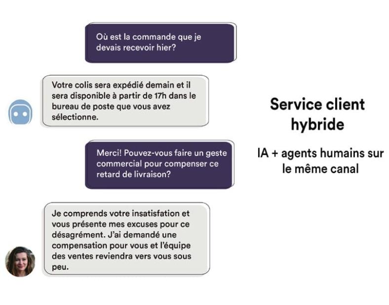Botmind-Service-Client-Hybride